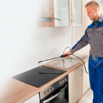 Five Common Pest Control Myths That You're Getting Wrong
